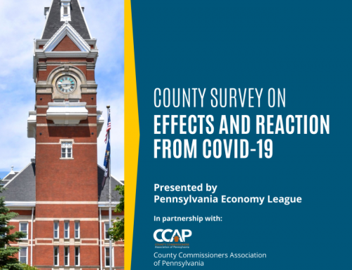 County Survey on Effects and Reaction from COVID-19